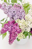 Beau bouquet de lilas dans le vase — Photo