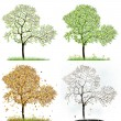 Stock Photo: Four season trees