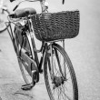 Vintage Bicycle in Black and White — Stock Photo