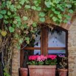 Beautiful window with flower box — Stock Photo