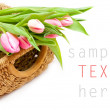 Pink tulips on white background — Stock Photo #28778043