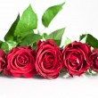 Stockfoto: Roses Bunch