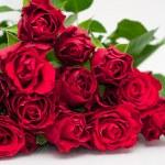 manojo de rosas — Foto de Stock