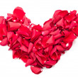 Heart of the petals of red roses isolated on white — Stock Photo