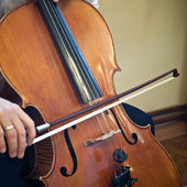 Cello musical instrument cellist musician playing. — Stock Photo