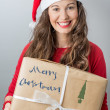Christmas delivery — Stock Photo #32945737