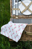 Picnic basket stock photo — Stockfoto