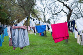 Laundry drying on the clothesline — Stock Photo