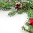 Pine branches with Christmas ornaments on white — Stock Photo