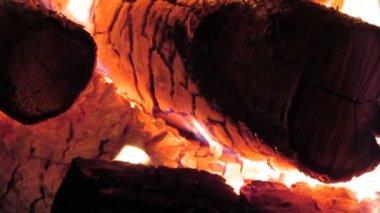 Fireplace Scene — Stock Video