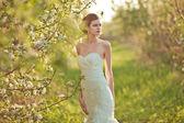 Portrait of a beautiful brunette bride — Stock Photo