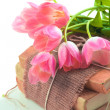 Pink tulips on old books — Stock Photo