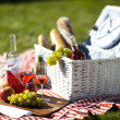 Picnic Time! — Stock Photo #12721301