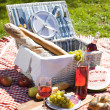 Picnic Time! — Stock fotografie