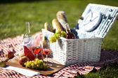 Picnic Time! — Stock Photo