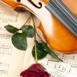 Beautiful roses and violin! — Stock Photo #15792677