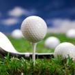 Lets play in golf! - Stock Photo