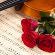 Beautiful roses and violin! — Stock Photo #16264297