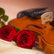 Beautiful roses and violin! — Stock Photo #16264311