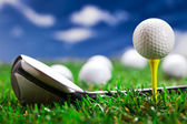 Lets play golf! — 图库照片