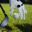 Set golf ball on a peg — Stockfoto