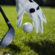 Set golf ball on a peg — Stock Photo
