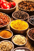 A selection of spices — Foto Stock