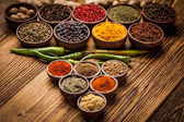 A selection of spices — Stock fotografie