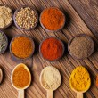 A selection of spices — Stock Photo #37338245