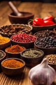 Ett urval av kryddor — Stockfoto