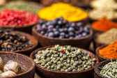 A selection of spices — Stock Photo