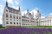 Budapest, view of parliament — Foto Stock