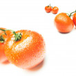 Tomato isolated — Stock Photo