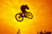 BMX Acrobatics — Stock Photo