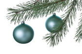 Christmas decoration ball and fir branch — 图库照片