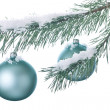 Christmas decoration ball and fir branch — Stockfoto