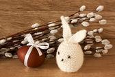 Velikonoční vajíčka a králík na jehnědy pozadí — Stock fotografie