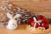 Easter eggs and rabbit on catkins background — Stock Photo