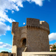 MincetTower which is defending old Dubrovnik — Stock Photo #19673379