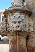 Lion fountain in Dubrovnik, Croatia — Stock Photo
