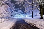Central park in Riga, Latvia at winter night — Stock Photo