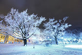 Central Park in Riga, Lettland in der Winternacht — Stockfoto