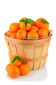 BAsket of Clementines — Stock Photo