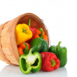 Stock Photo: Basket of Bell Peppers