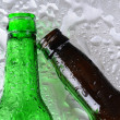 Stock Photo: Beer Bottles on Wet Surface