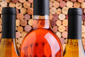 Closeup Wine Bottles in Front of Corks — Stok fotoğraf