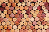 Wall of Wine Corks — Stockfoto