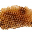 Honeycomb Section on White - Stock Photo