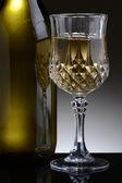 Fancy Glass of White Wine — Stock Photo