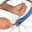 Closeup Man Tightening Bicycle Wheel - Foto Stock